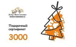 Подарочные сертификаты 3000 руб - фото 12797