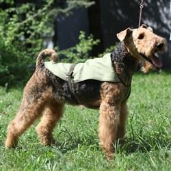 OSSO Охлождающая попона для собак OSSO Fashion р.25 - фото 5189