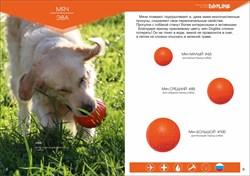 Игрушка для собак Doglike Мяч большой оранжевый - фото 6318