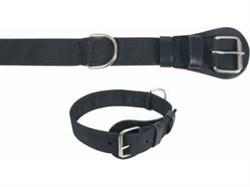 Dingo Ошейник синтетический, широкий, без ручки, 4*65-75см черный