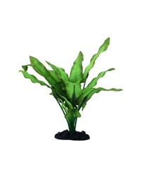 Растение шелковое Prime Анубиас Хастифолия 13см - фото 9764